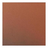 Daltile Quarry Blaze Flash 6 in. x 6 in. Abrasive Ceramic Floor and Wall Tile (11 sq. ft. / case)