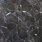 MS International Laurent Brown 18 in. x 18 in. Polished Marble Floor and Wall Tile (11.25 sq. ft. / case)