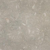 MS International 12 in. x 12 in. Nova Verde Limestone Floor and Wall Tile
