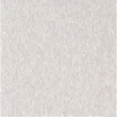 Armstrong Imperial Texture VCT 12 in. x12 in. Soft Warm Gray Standard Excelon Commercial Vinyl Tile (45 sq. ft. / case)