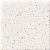 Daltile Semi-Gloss Golden Granite 2 in. x 2 in. Ceramic Bullnose Corner Wall Tile