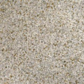 MS International 12 in. x 12 in. Gold Rush Granite Floor and Wall Tile