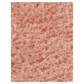 Kas Rugs Cushy Shag Pink 3 ft. 3 in. x 5 ft. 3 in. Area Rug