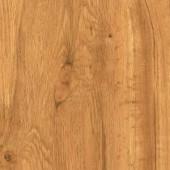TrafficMASTER Allure Plus Hamilton Oak Resilient Vinyl Flooring - 4 in. x 4 in. Take Home Sample